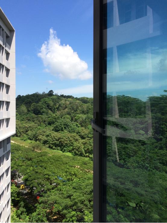 从宿舍往外照的,坡坡常年可见的蓝天白云,没加滤镜!